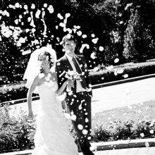 Свадьба Марины и Юры, 2009